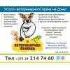 Услуги ветеринарного врача на дому!   г.   Минск Опытный,   практикующий ветеринарный врач окажет помощь вашему питомцу на дому.    Вакцинация и оформление ветеринарных паспортов,   кастрация,   стери
